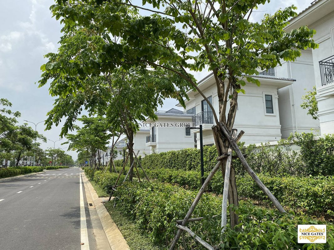 Du-an-swanbay-Dai-Phuoc